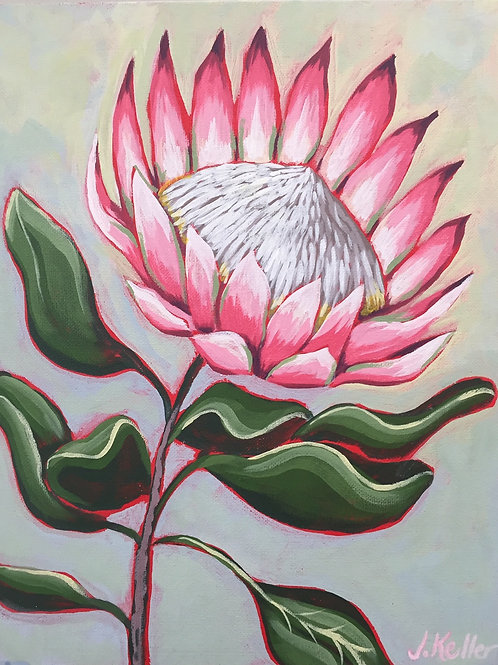 King Protea, Acrylic on Canvas Panel, 11x14""