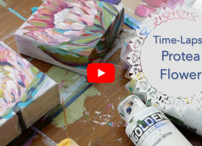 Time-Lapse Protea Flowers