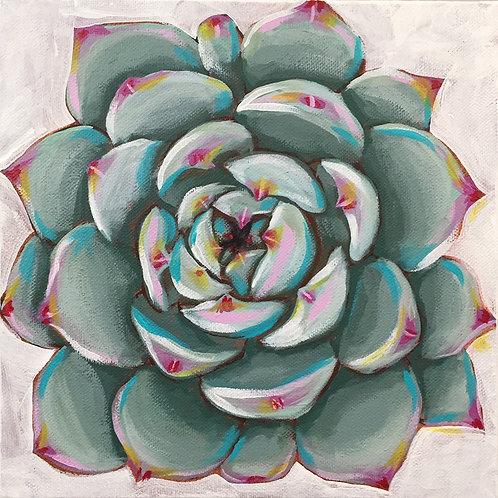 """Succulent, Acrylic on Canvas, 8x8"""""""