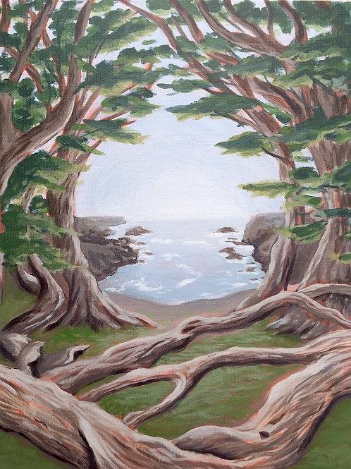 "Cypress Grove, Acrylic on Canvas Panel, 11x14"""