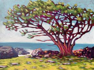 Cypress at Gerstle Cove 1.jpg