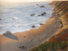 Sonoma Coast.JPG