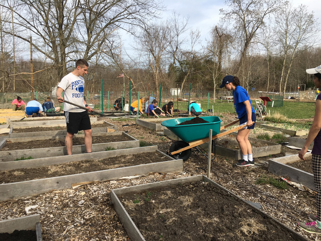 The MHC Track Team joined Sue Brouillette (on her birthday, no less) to clean up and begin planting