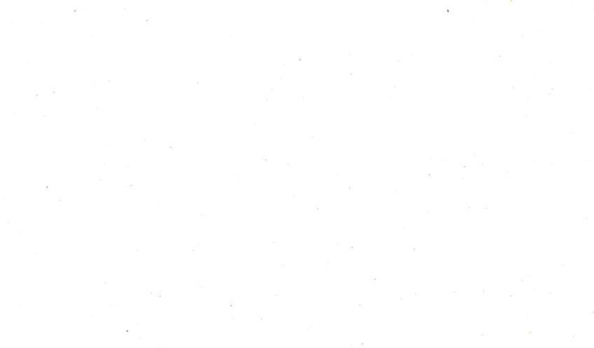 white-background-2-768x450.jpeg