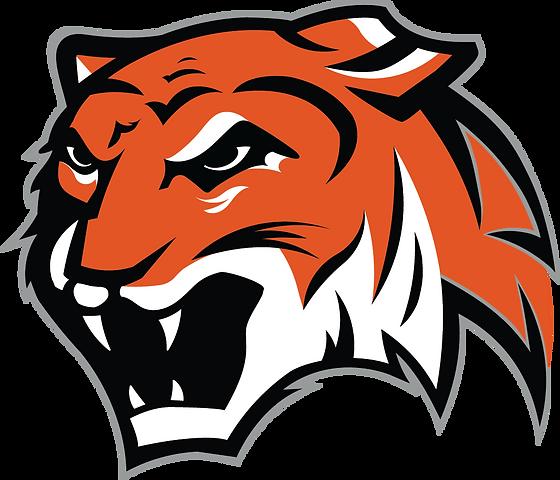 DN Tiger.png
