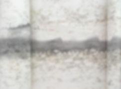 web close up image 1.jpg