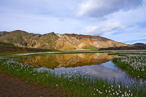 ICELAND IN SPRING