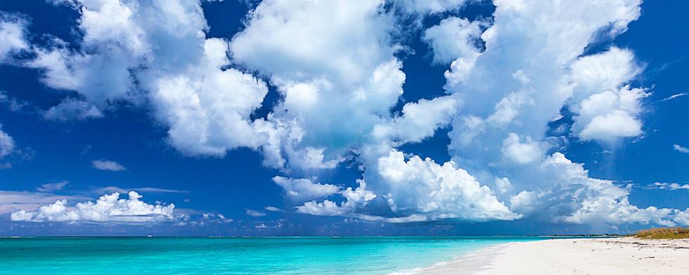 Bold Clouds