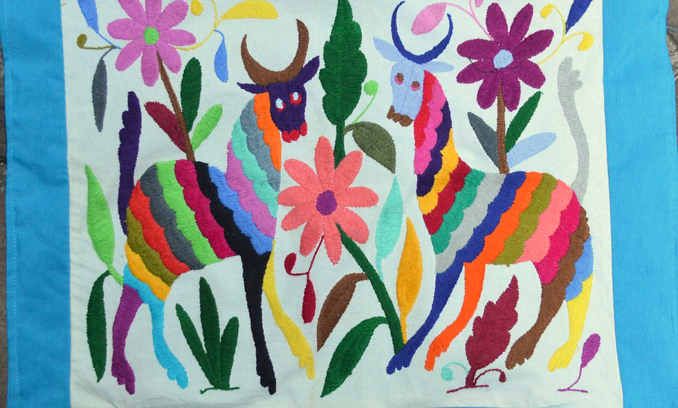 Hand Embroidered Otomi Pillow Case