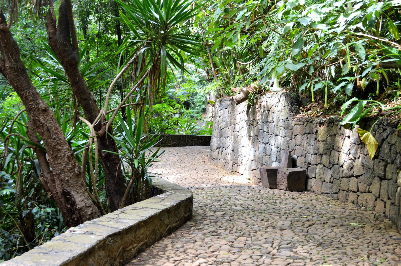 Uruapan National Park (2).JPG