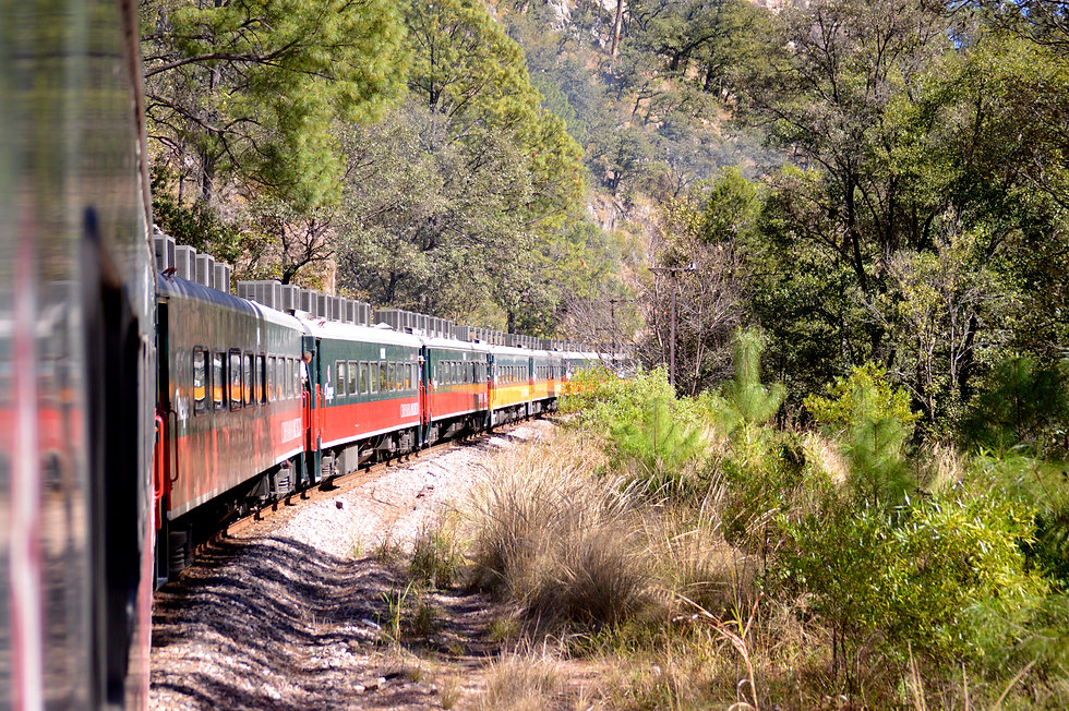 El Chepe Train (7).JPG
