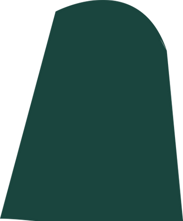 Vector (5).png