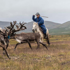 The Tsataan - Reindeer People