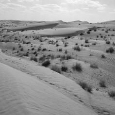 Wahabi Sands - Oman