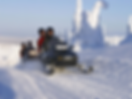 Winter Tour Packages in Muskoka