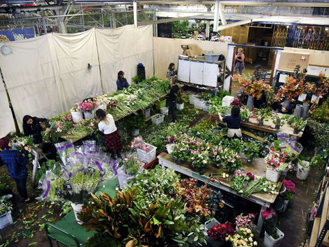 SF Flower Mart's redevelopment plans expand