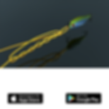 Fishing Knots Real 3D mobile app icon
