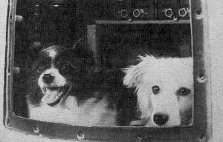 Soviet space dogs Tsygan and Desik