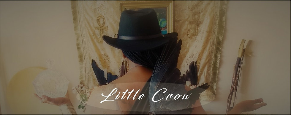 Little Crow New Logo WHITE.jpg