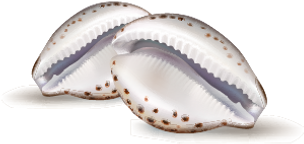 cowries-at-2x.png