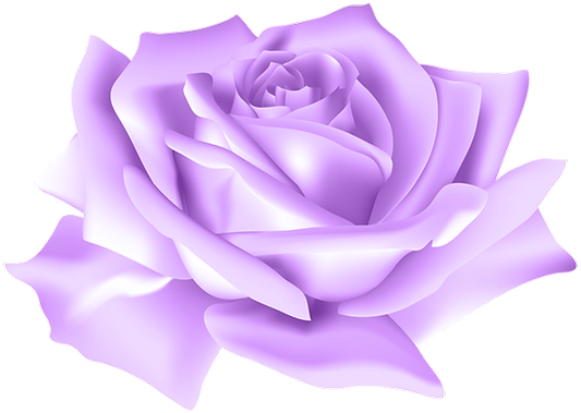 Purple_Rose_Flower_PNG_Clip_Art_Image.pn