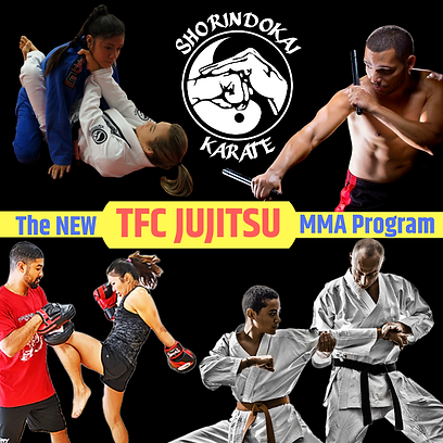 Total Fighting Concepts Jujitsu