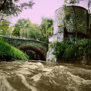 """Concurso de fotografía """"Márgenes del Río Magdalena"""". Una iniciativa vecinal."""