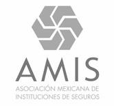 AMIS_edited.jpg