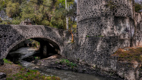 El Río Magdalena, único río vivo en la Ciudad de México