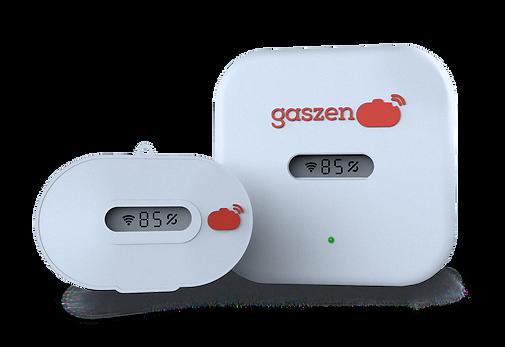 Sistema-Gaszen-mx-3.png