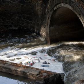 -CM- Puente Panzacola y Río Magdalena