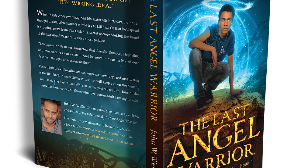 The Last Angel Warrior Book 1