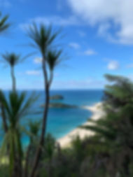 Beach from mtn in Maunganui NZ.jpg