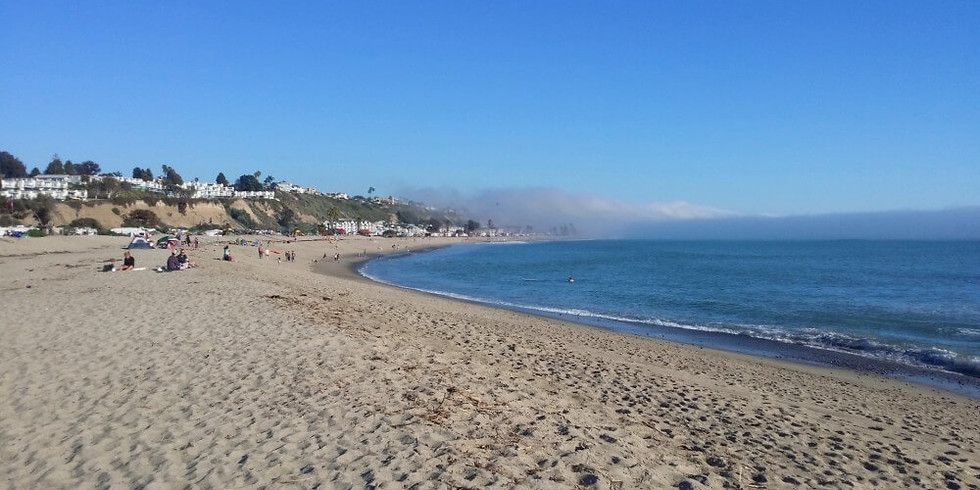 Doheny Beach Cleanup