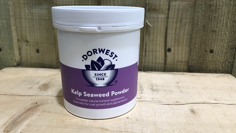 Dorwest Sea Kelp Powder
