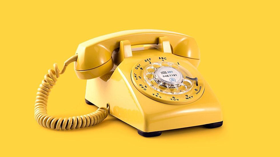 Phone consultation 20-30mins