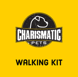 Walking Kit