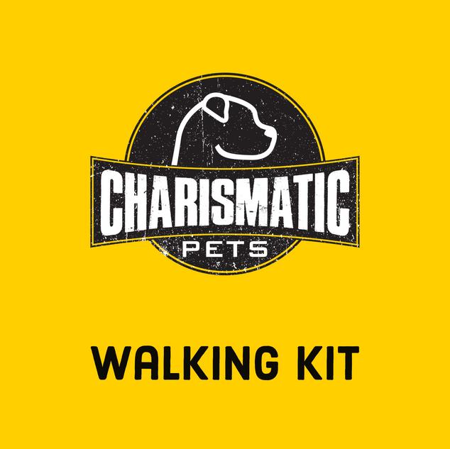 Walking Kit