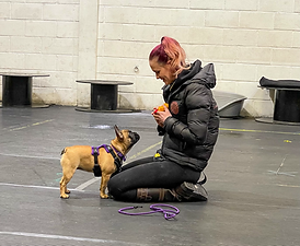 charis and penny training.HEIC