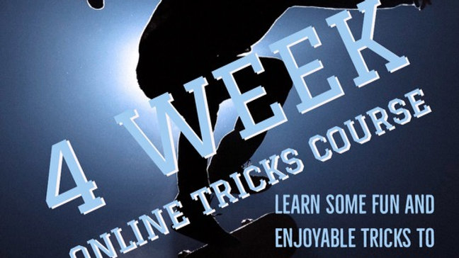 Online Tricks Course