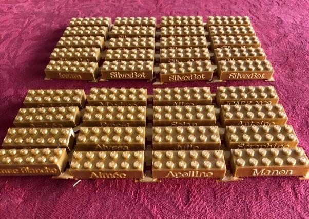 Briquettes pour stage Lego Technic