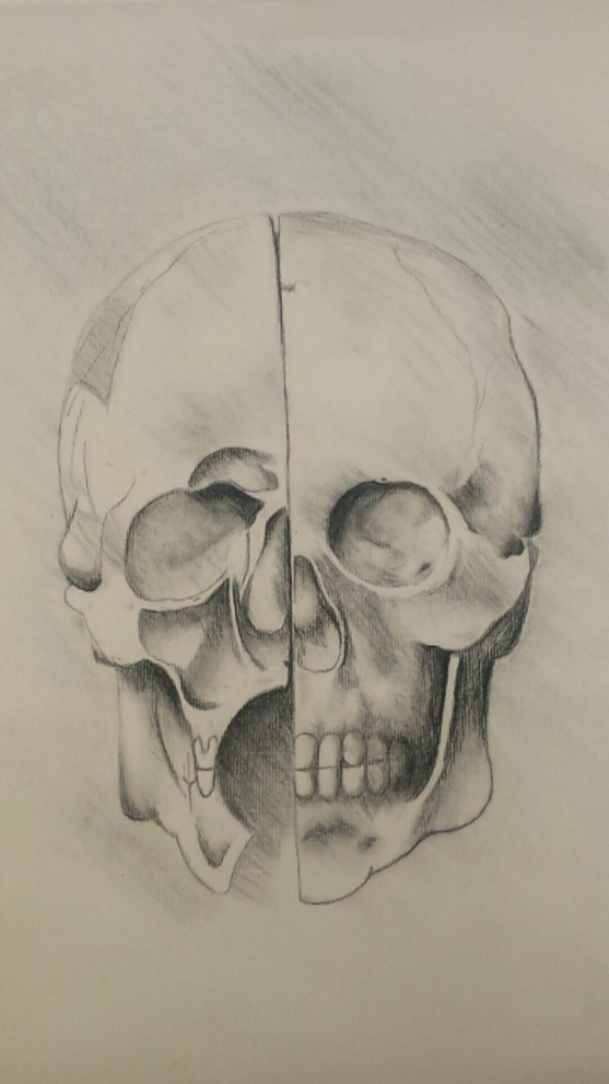 Charcoal 18x24 based on DaVinci anatomy drawings