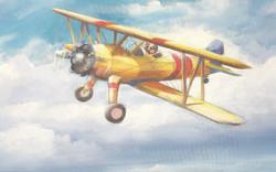 YELLOW BIRD bi-plane Children's mura