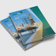 Annual Overview Report