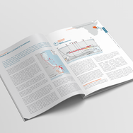 Wentwoth Resources Annual Report