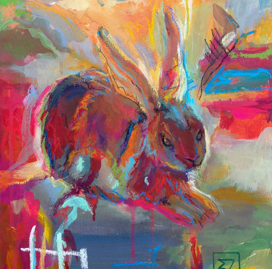 Funny Rabbit's tail