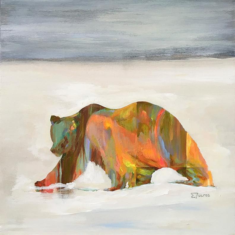 L'ours Boréal
