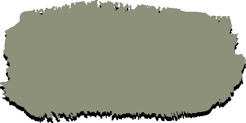 Mineral Paint: Lichen