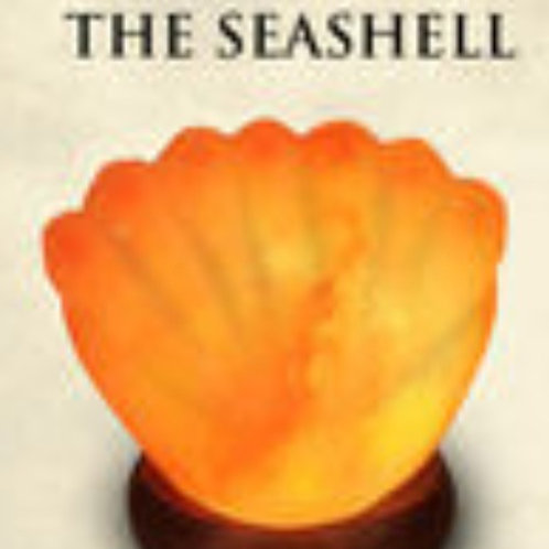 Seashell Salt Lamp
