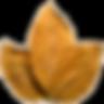 purepng.com-tobaccotobaccocigarettesciga